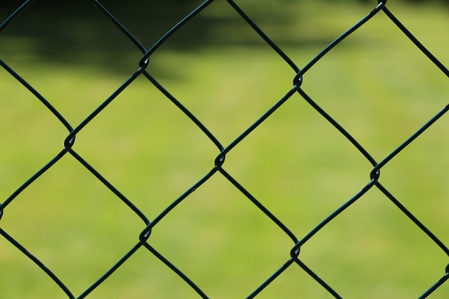 wire-mesh-fence-363497_640