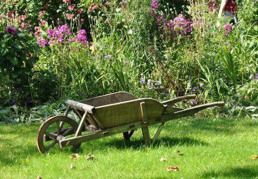 Comment sécuriser le jardin des intrusions ?
