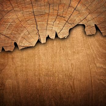 Conseils pour protéger les bois extérieurs