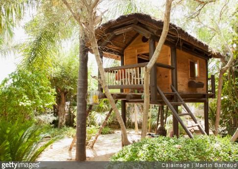 Une cabane en bois dans mon jardin